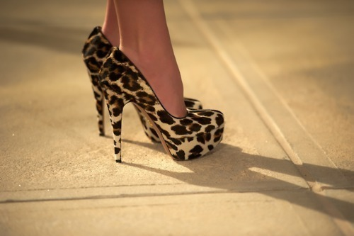 heels, leopard print