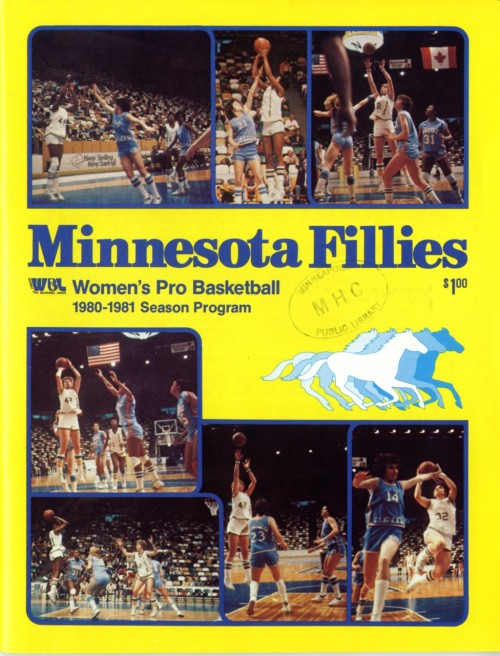 Minnesotas Other Professional Basketball Teams