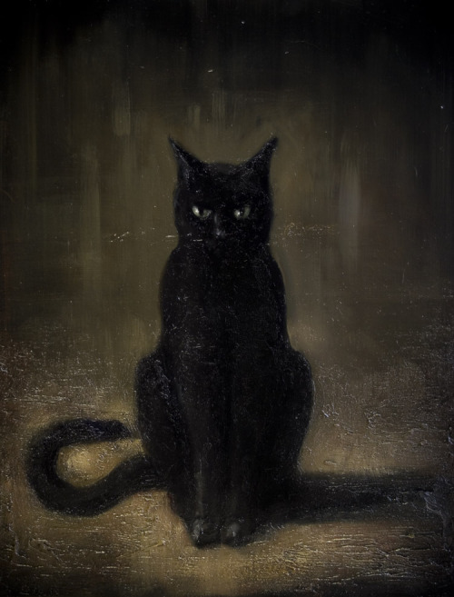 Mysterious tomcat