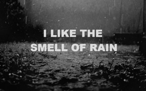 August rain.
