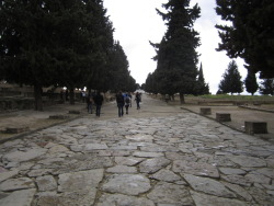 A bustling Roman city used to be here.