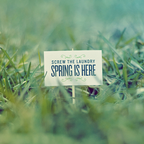 Screw the laundry - Spring is here (by gentlepurespace)