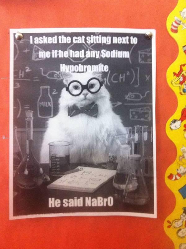 Chemistry Cat Strikes