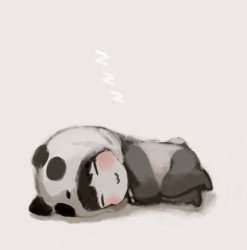 panda kawaii chibi sleep cute sleeping tao exo anime sleepy pandas kris japan blippo while were asianfanfics taoris