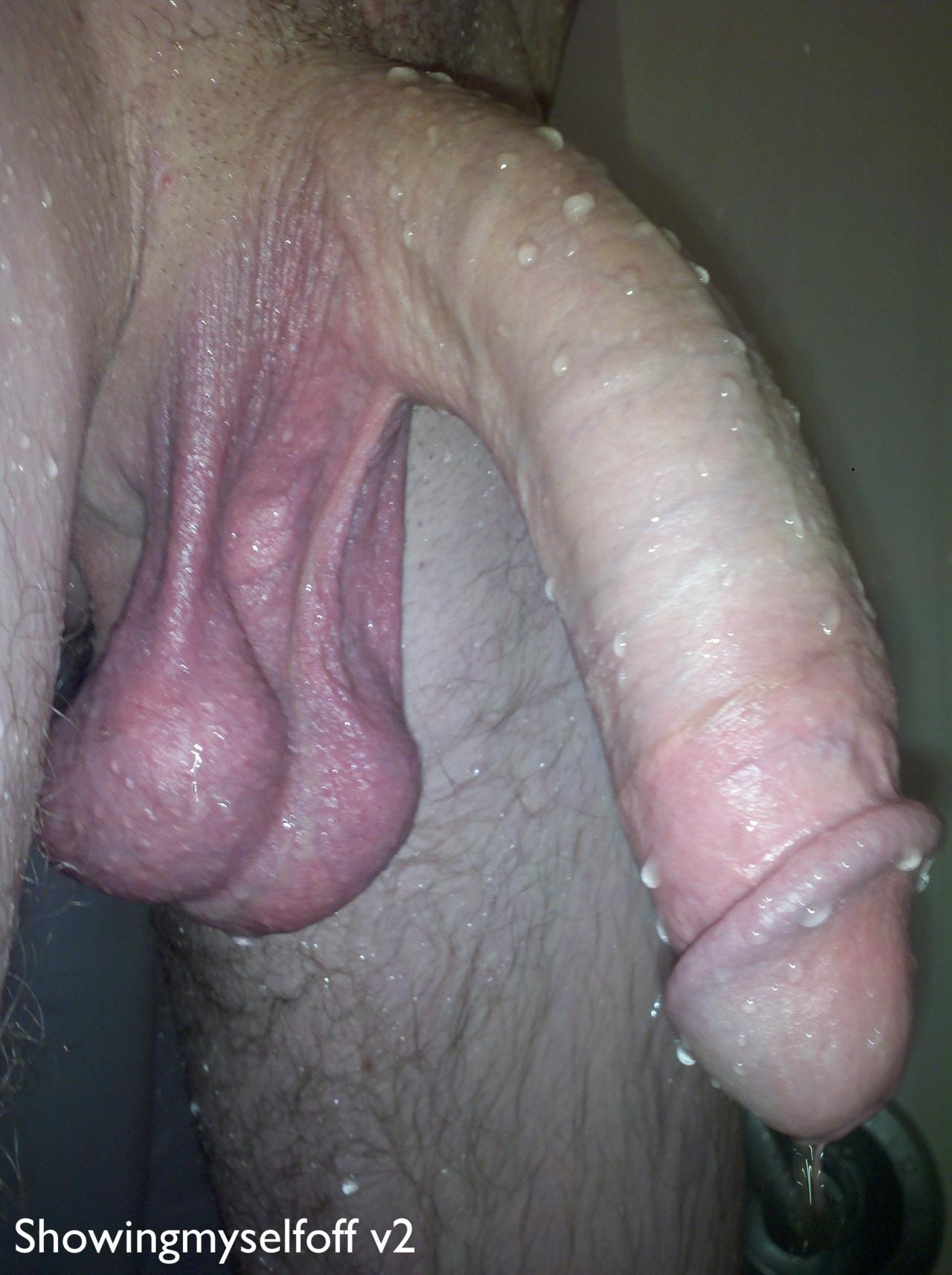 виды полового члена на фото