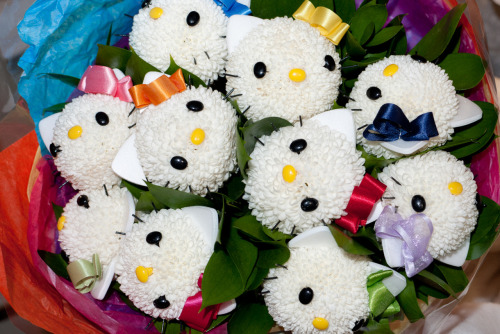 Hello Kitty flowers.
