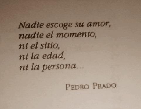 Nadie Escoge Su Amor Frases Libres