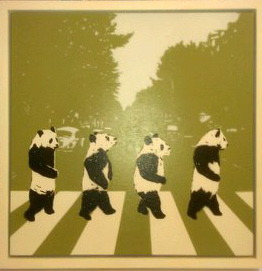 SPQR, 'Black and White Cat Crossing'
