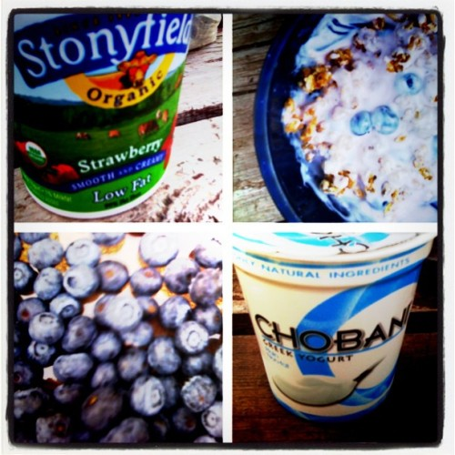 camping menus, camp breakfast, yogurt, granola, blueberries, stonyfield farm