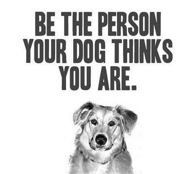 confessionsofalostlove:</p> <p>I love dogs so much.