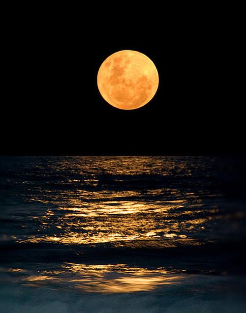 Image result for moon night ocean