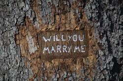 Sposarsi in modo perfetto. Come scegliere il giorno del matrimonio tumblr m9umg7hg501rdffblo1 500