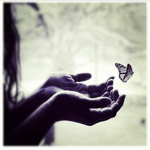 leben, Beziehung, liebe, menschen, gefühle, herz, follow your heart, dem herzen folgen, auf das herz hören, gefühle frei lassen, Glück, Freude