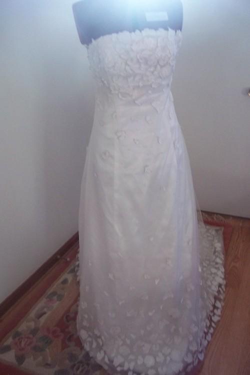 PastaPastaPasta  Recently I bought the infamous Amy Pond wedding