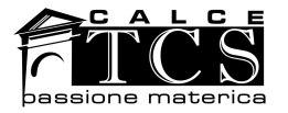 tcs-logo-nero