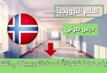 ألديكم غرفة شاغرة؟/ تحدث النرويجية في الفندق