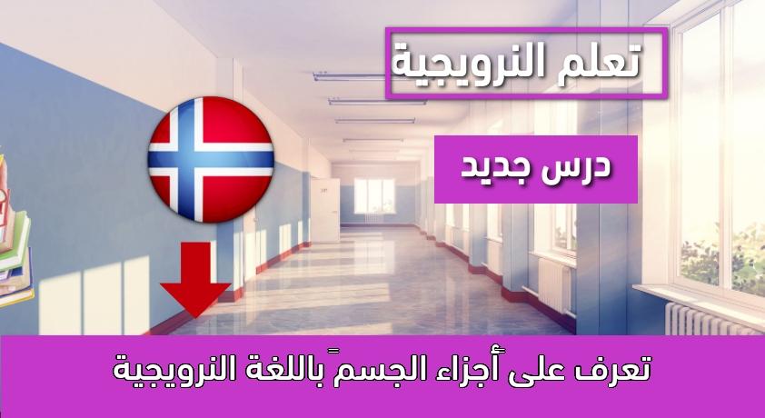 """تعرف على """"أجزاء الجسم"""" باللغة النرويجية"""