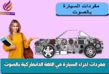 مفردات اجزاء السيارة في اللغة الدانماركية بالصوت
