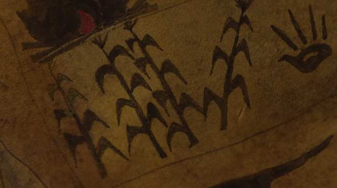 Black corn shown on the living map with a turkey or handprint