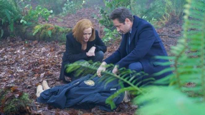 Mulder and Scully find the body of a child in the woods
