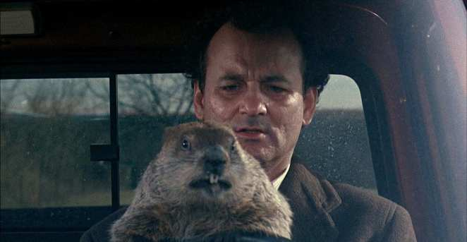 Bill Murray and his pal, Punxatany Phil, Groundhog Day