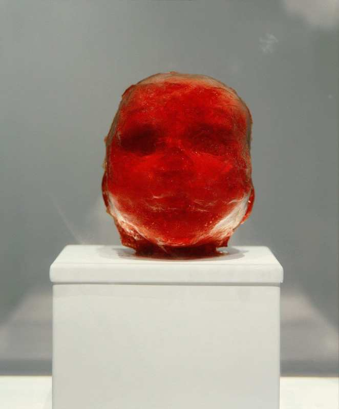 Marc Quinn. Lucus. 2001. Human placenta and umbilical cord, stainless steel, Perspex, refrigeration equipment, 2001