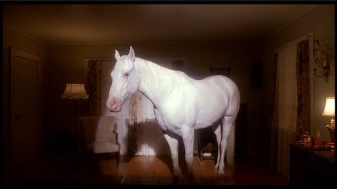 A white horse appears in the Palmer house.