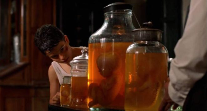 Carlos looking at the jars with embryos