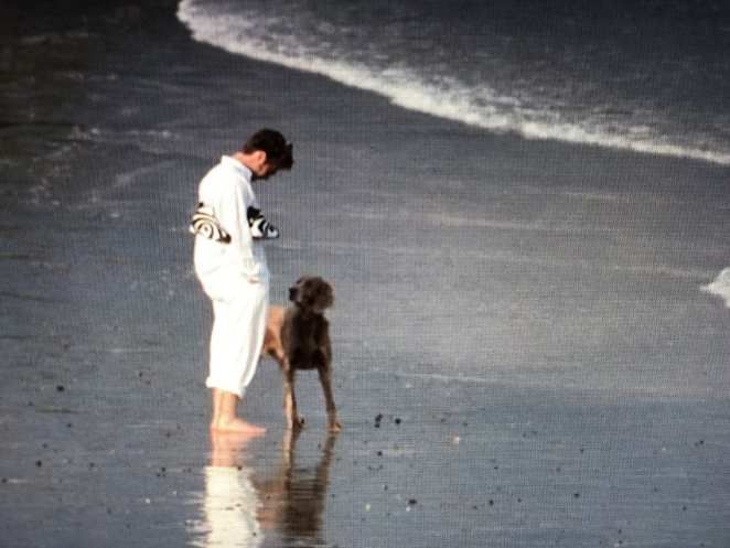 Ronnie Bostock and his dog walk on the beach