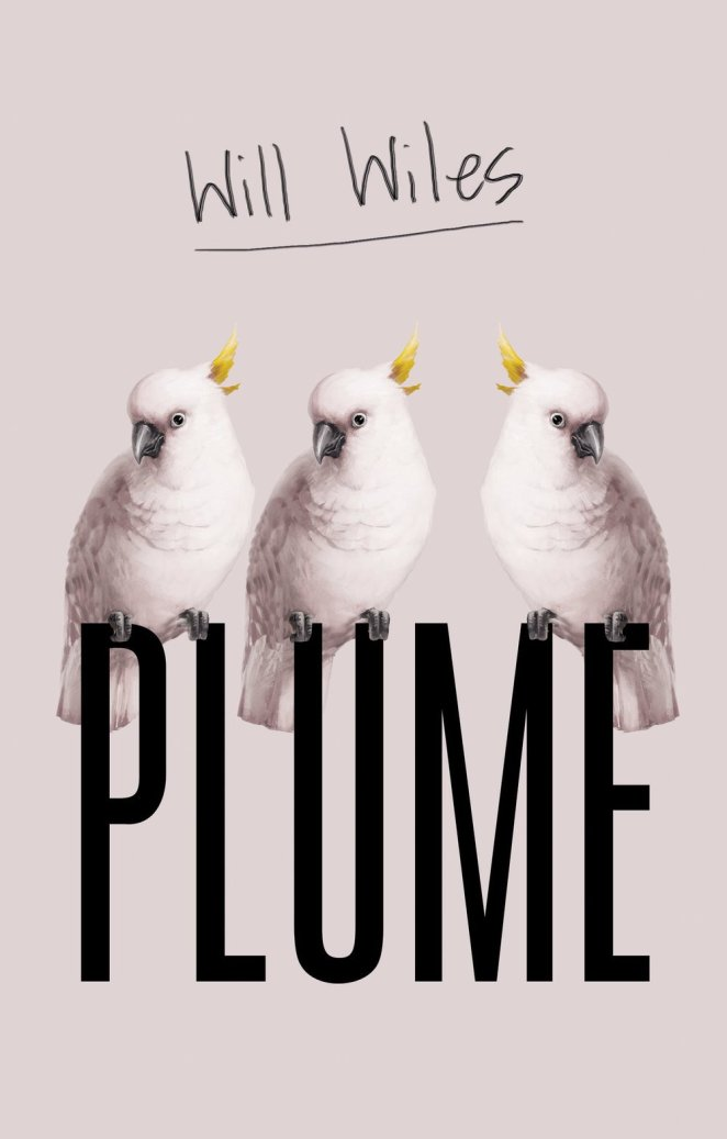 The cover of Will Wiles' book Plume features white birds perched on the title