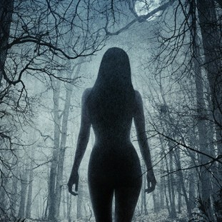 the silhouette of a naked woman in a forest
