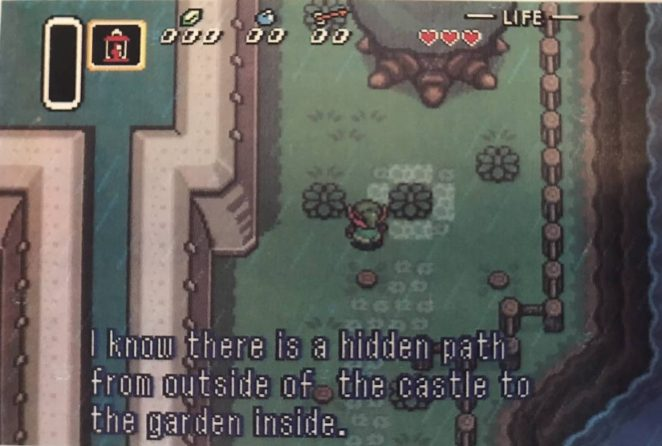 Link walks around the castle in the rain and notices a bush with flowers around it, seemingly meant to be noticed.