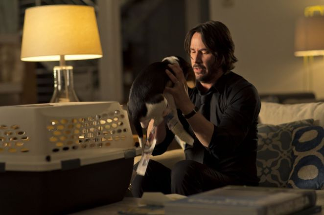 John Wick first encounters the adorable puppy in the first movie.