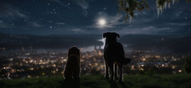 Lady and the Tramp gaze above the city at night
