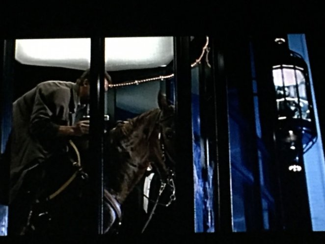 Harry is on a horse crammed into a glass elevator