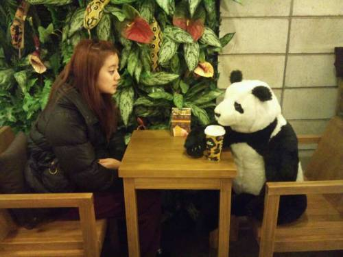 101204 Lim's Twitter  Me&my new best friend!고민상담중~ㅋㅋ Me&my new best friend!Getting advice on issues~keke  do the panda and the background look familiar? haha