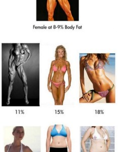 Wow also what the female body looks like at different fat percentages rh blogilates