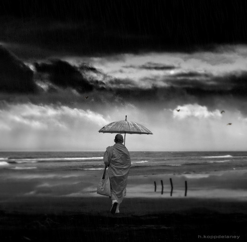 styleanddiscernment: Monk in Rain by h.koppdelaney on Flickr. Monk in Rain by h.koppdelaney on Flickr.