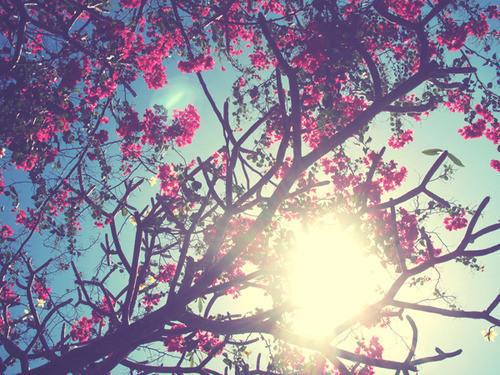 Hi Beautiful!!