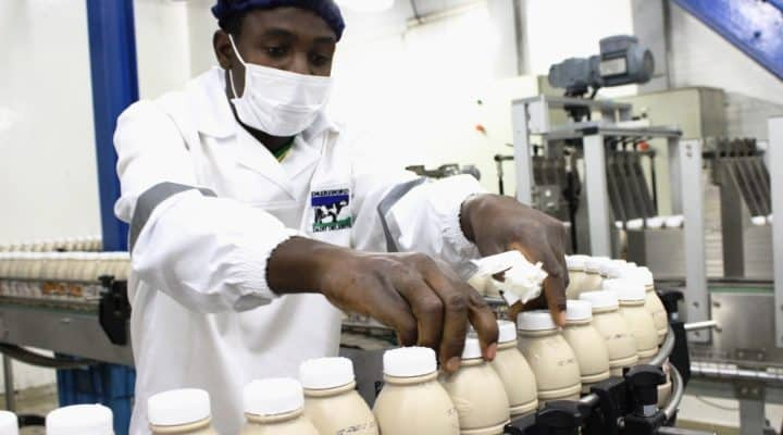 Dairiboard Revenue 15% Up » 263Chat