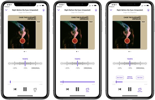 Songs can be played once, or the entire song or a section can be looped continuously.