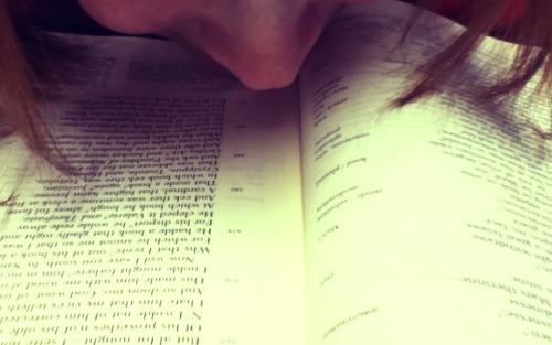 Sniffare libri
