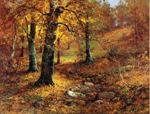 aleyma:</p>