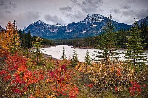 Grand Tetons, fall colors