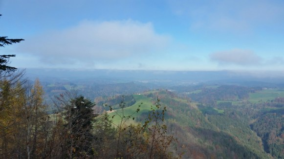 Looking at Thurgau