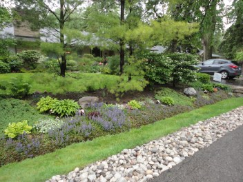 Lateral front gardens