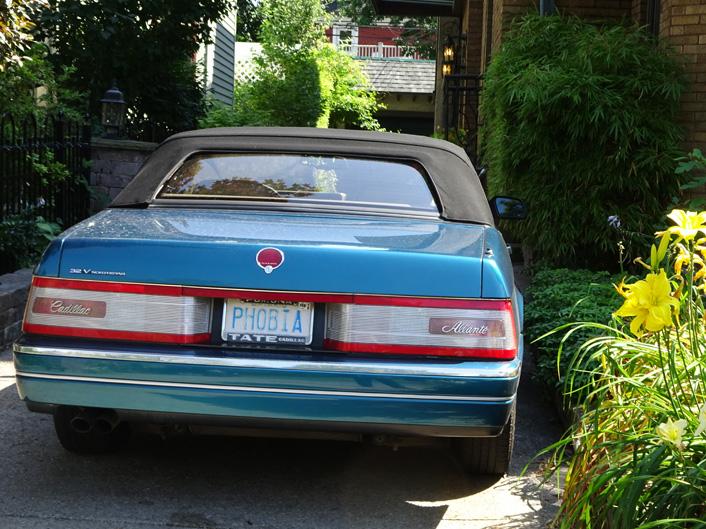 Buffalo Classic Car Phobia by the side garden