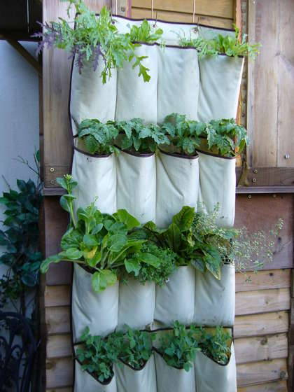 sustainable-sam:  offgriddesign:  girlintrovert:  storagegeek:  VERTICAL VEGETABLES: Instructables  Tell me you're not hitting yourself in the head for not thinking of this first! I don't know how well it would contain veggies, but for herbs I think this is dandy!  SUMMER PROJECT!  I found one of these when clearing out the basement at the weekend. Definitely going to give it a go, and it's almost the right time to start growing too.  Way cheaper I am sure than the Woolly Pockets.   this is awesome!!!!!!!!!