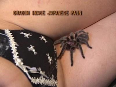 【閲覧注意】蜘蛛・針・蝋燭を使ったレズ拷問動画www血が出るからマジ閲覧注意wwww