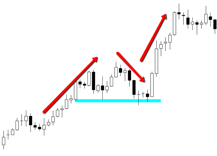 Price Action Guide to How the Forex Market Moves